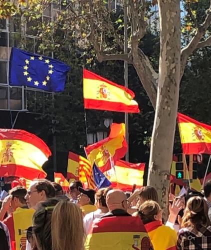 Barcelona ha acogido una gran manifestación en contra del proceso independentista y a favor de la convivencia, la concordia y la paz social, gravemente alterada a raíz de los disturbios callejeros protagonizados por los radicales tras hacerse pública la sentencia del Tribunal Supremo contra los líderes secesionistas. La FNHG y la HAGC se adhirieron a la convocatoria de SCC
